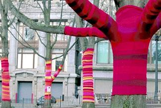 tricot_arbres