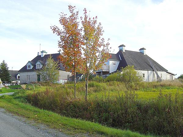 Domaine Montauban