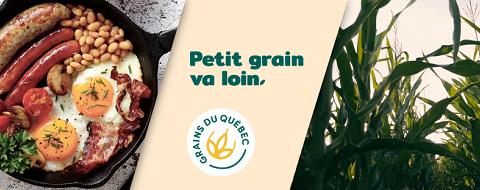 La face cachée des grains du Québec…
